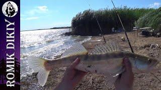 Летняя рыбалка Михайловское озеро Одиночный выезд