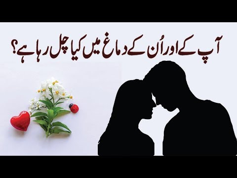 Who Has You in Their Mind? ( Love Personality Test ) in Urdu & Hindi