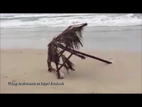 Varadero después del huracán Irma