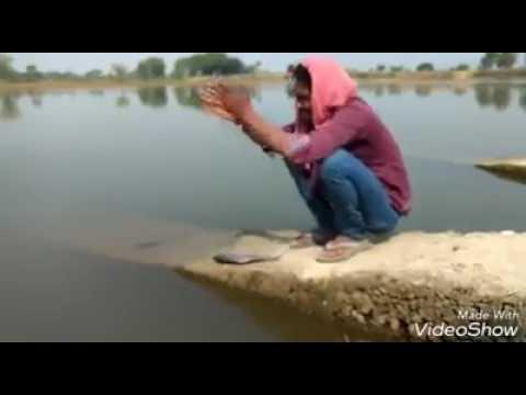 St Lambadi Jokes   whatsapp Comedy Videos  