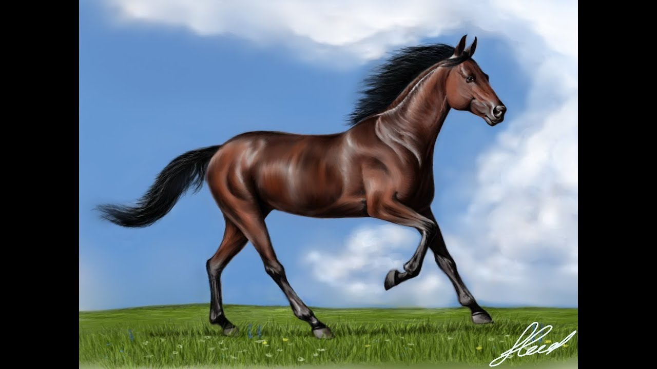 Рисуем лошадь - YouTube