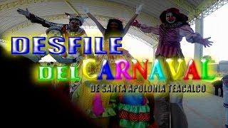 Desfile de Feria y Carnaval Santa Apolonia Teacalco 2017