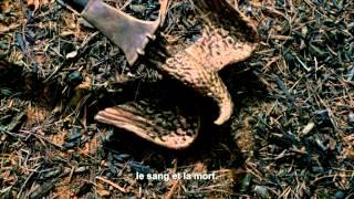 SPARTACUS : La guerre des Damnés (Saison 3) - Trailer