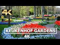 Keukenhof Tulip Gardens in 4K Netherlands