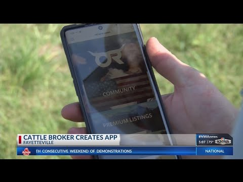 Local cattle broker launches app for livestock sales