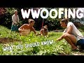 HOW TO WWOOF FOR BEGINNERS - THE BASICS FOR WORK + CHEAP TRAVEL