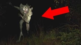 5 Giant Monsters Hidden in the Dark