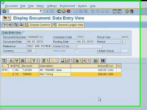 How to Use Paymetric Direct AR for SAP Accounts Receivables