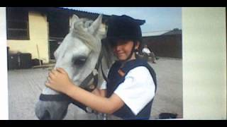 watch this lovely horse videoxxx