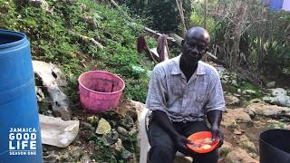 JAMAICA GOOD LIFE - EP136 - King Baba Talks About Grand Market