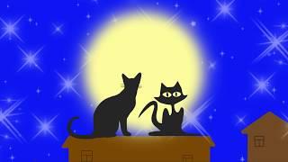 Коты и мечты
