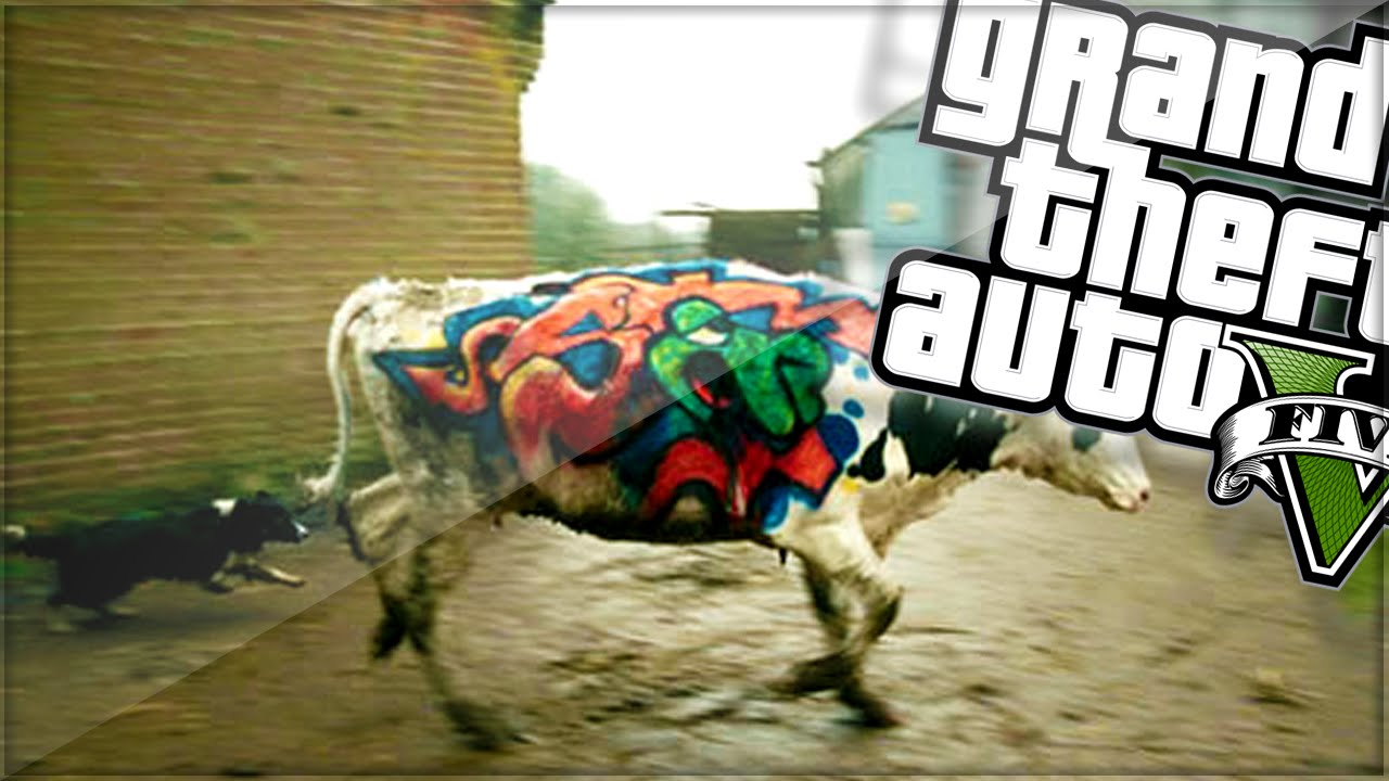 Graffiti cows gta 5 funny moments youtube