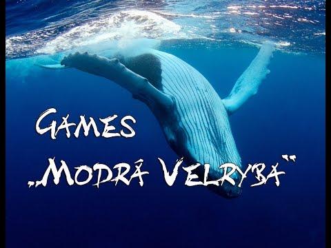 Tohle jsou pravidla Modr velryby!