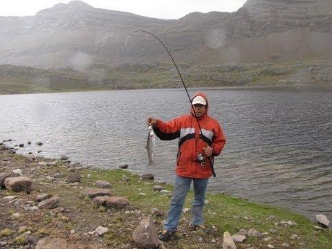 Pesca de trucha lagunas de yauyos part 2 youtube for Crianza de truchas en lagunas