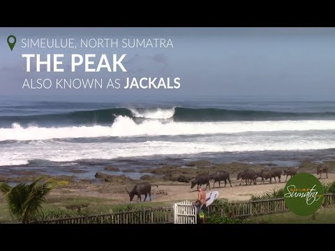 The Peak (aka Jackals), Simeulue, North West Sumatra