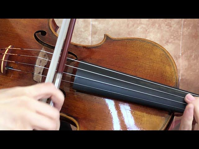 Ifstrings Master build deluxe Wood #361 Guarneri del Gesu 1743