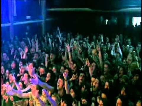 Babyshambles - Fuck Forever (music video)