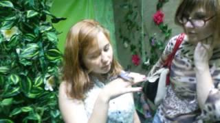 Парк бабочек в Казани   бабочки(, 2016-06-29T05:44:34.000Z)
