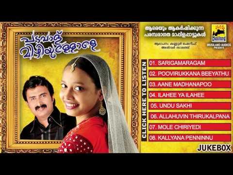 Malayalam Mappila Songs | Padavalu Mizhiyullole | Kannur Shareef Old Mappila Songs | Audio Jukebox