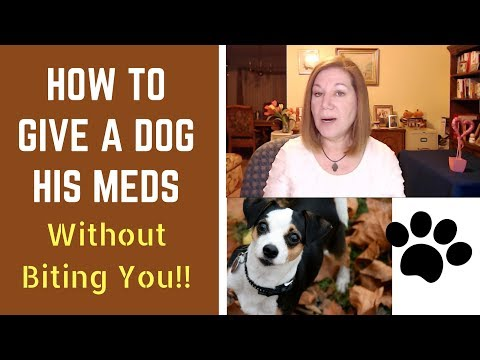 How to Give a Dog His Medicine   EASY! Guaranteed Success   No Biting!