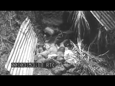Invasion Of Guam: Landings & Land Action, 07/23/1944