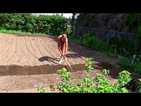 "The Canadian Garden prt. 2 ""Leisure Organic Gardening""   YouTube"