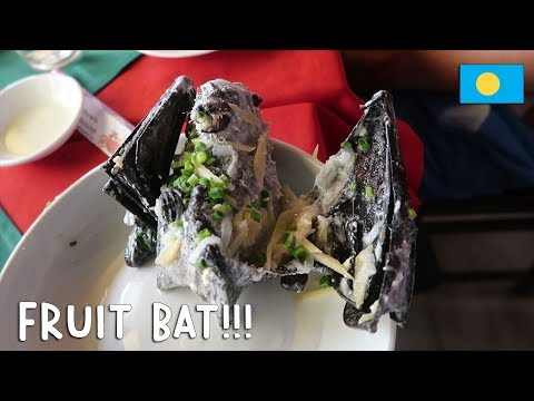 WOULD YOU TRY FRUIT BAT?