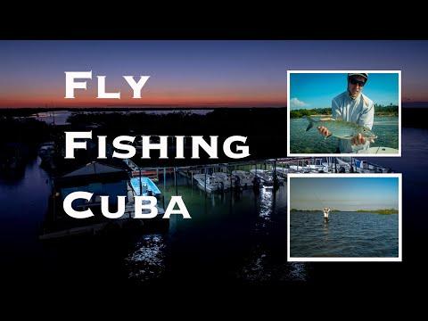 Fly Fish Jardines De La Reina
