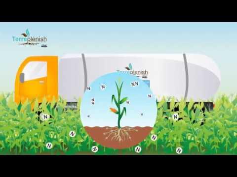 Terreplenish Nitrogen Fixing Microbes