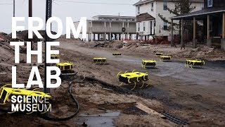 The robot finding earthquake survivors