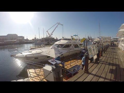 Luxury Boat Experience - V&A Waterfront, Cape Town (360°)
