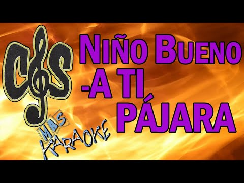 CON LA MUSICA EN LA SANGRE - NIÑO BUENO / A TI PAJARA (KARAOKE)