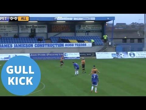 В Шотландии вратарь сбил мячом пролетавшую над полем чайку. Видео