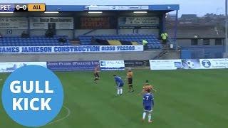 Keeper's Goal Kick Strikes Flying Seagull