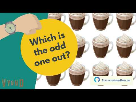 which-is-the-odd-one-out?-can-you-spot-the-differences?-[12-riddles+bonus]