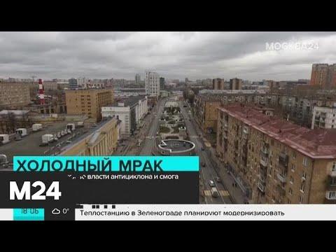 В Москву пришло резкое похолодание - Москва 24