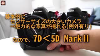 【EOS 5D2】伝説のフルサイズ一眼レフカメラを手に入れた。