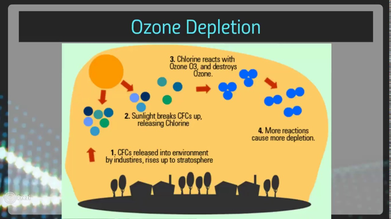 how to stop ozone layer depletion