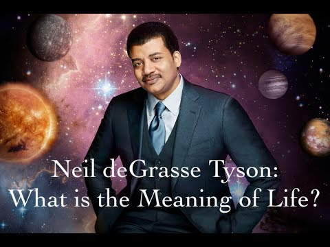 Neil deGrasse Tyson on the Meaning of Life