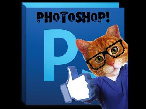 Как сделать вместо лица человека  лицо кошки ? PhotoshopCS5