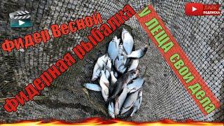 Фидерная рыбалка весной на травянском водохранилище. Рыбалка на Фидер Весной. Ловля на Фидер.