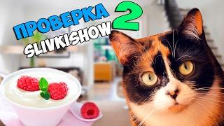 Проверка SlivkiShow, как сделать йогурт своими руками