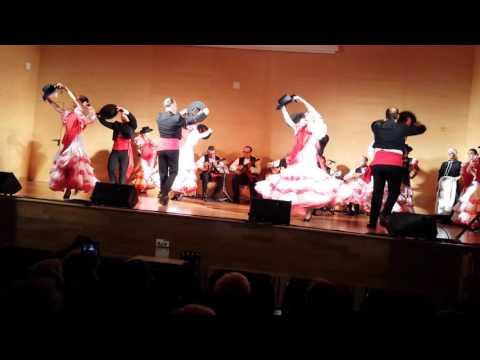 Córdoba el vito grupo de danza san Rafael-alcarria