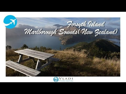 Forsyth Island/ New Zealand (Marlborough Sounds)
