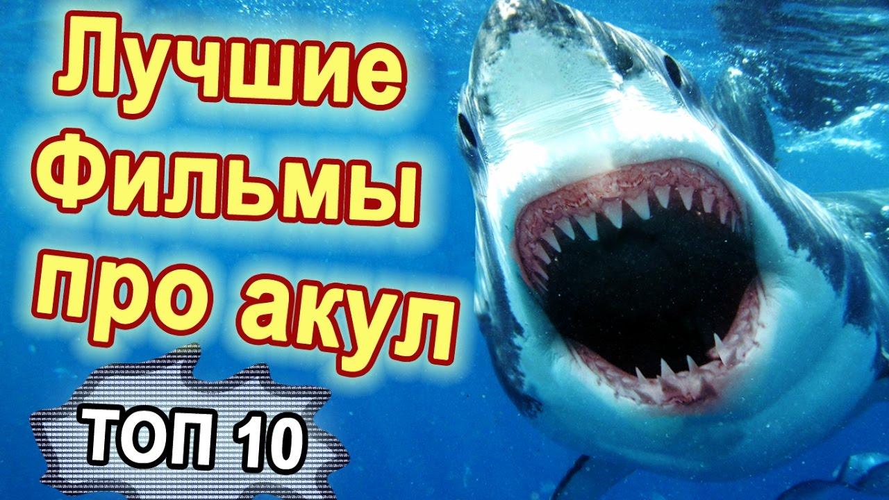 ТОП-10 Лучшие фильмы про акул. Фильмы ужасов про акул ...