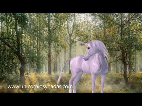 🦄 UNICORNIOS: ¿Cómo son los unicornios? ¿Qué poderes tienen? CARACTERÍSTICAS PRINCIPALES. ✨✨