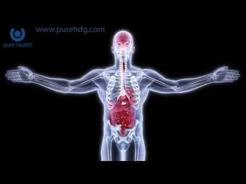 Molecular Hydrogen And Gut Health