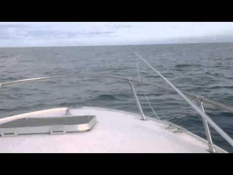 21 ft seabird 3-5 forecast