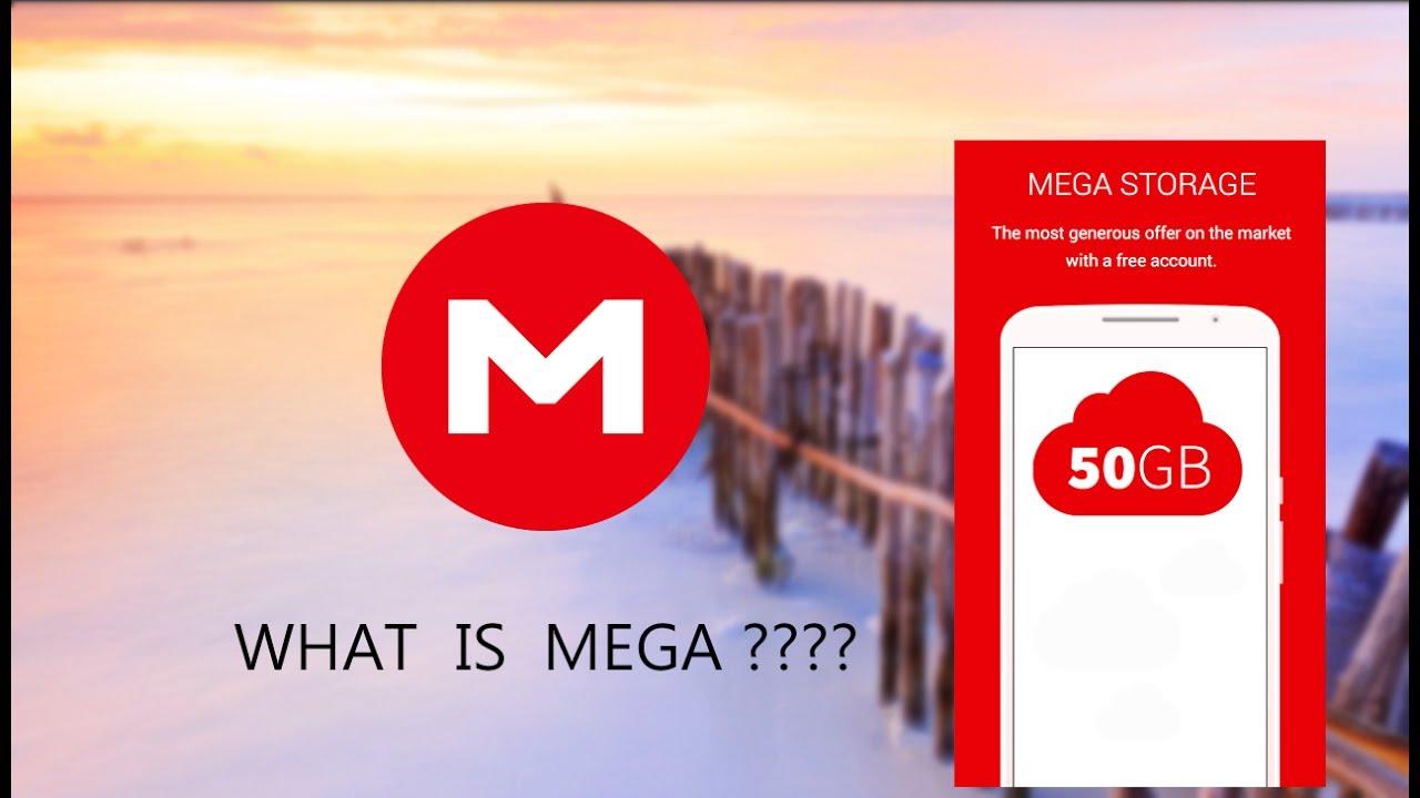 What Is Mega App