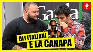 Gli Italiani e la Canapa - TELO MARE TELO CHIEDO - theShow